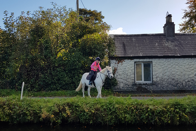 Campamento verano equitación