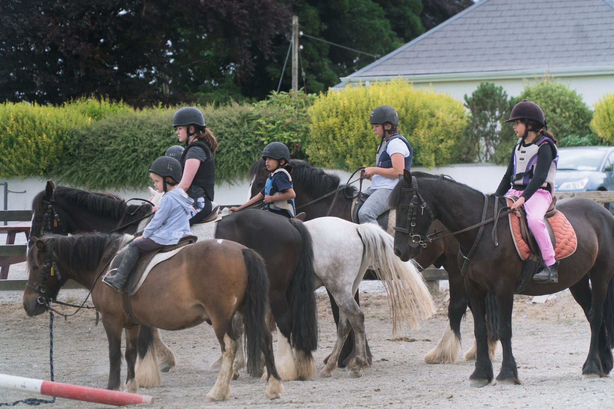 Horse-camp