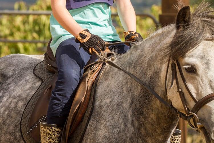 campamento montar a caballo