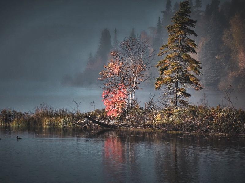 autumn-landscape-2169288-1